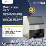 Jual Mesin Pembuat Es Batu (Ice Cuber Machine) di Bandung
